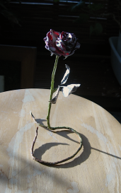 Rose 1, altered object