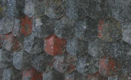 Slate detail