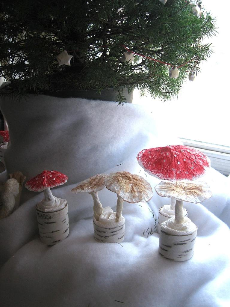 mushrooms under the tree