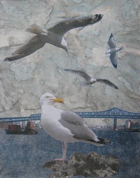 JFries MysticBirds1 Herring Gulls 4.2.19