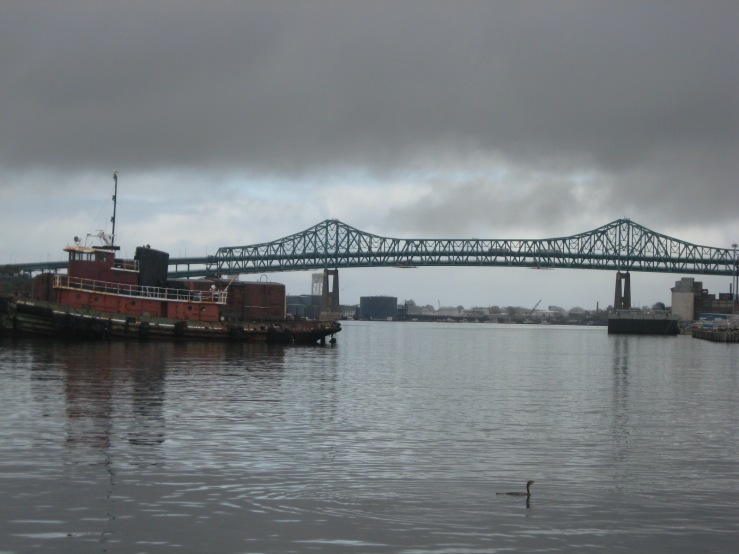 JFries Tobin Bridge with cormorant 10.28.19
