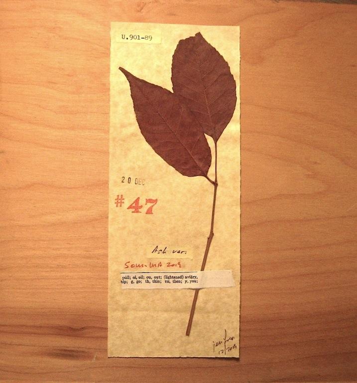 JFries Botanicals Ash.2 12.31.19